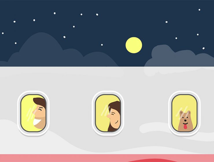Plane windows during the night, with a man behind the first window, a woman behind a second one, and a dog sitting in the last row plane seat, graphics by vecteezy.com