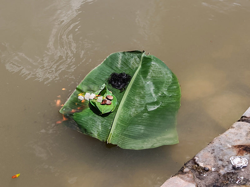 Photograph of a banana leaf floating in the river at Thaipusam carrying some human hair and some cubes set on fire, photo by Ivan Kralj