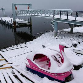 Snow-covered swan-shaped pedal boats at the shore of the Chuzenji Lake, Japan, photo by Ivan Kralj