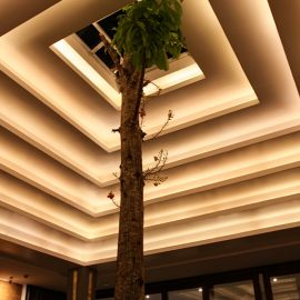 Tree growing through the roof of the restaurant of Jaya House River Park hotel, in Siem Reap, Cambodia, photo by Ivan Kralj