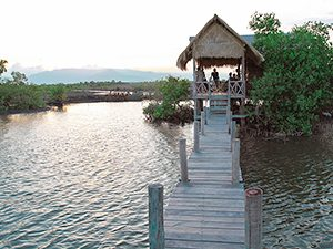 Bungalow on water with a dock, at Man'Groove Guesthouse in Kampot, Cambodia, photo by Ivan Kralj