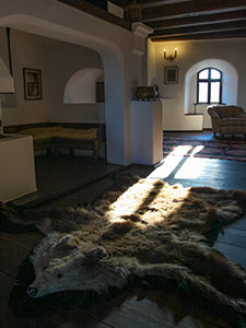 Bear skin rug in the salon of Bran Castle, also known as Dracula Castle, in Transylvania, Romania, photo by Ivan Kralj