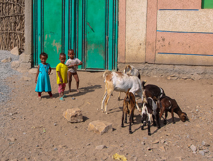 Village children with goats in Danakil Depression, Ethiopia, the hottest place on Earth, photo by Ivan Kralj