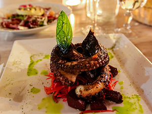 Octopus served with julienne vegetables, at Elia Restaurant in Kastalia Boutique Hotel in Delphi, center of the world, Greece, photo by Ivan Kralj