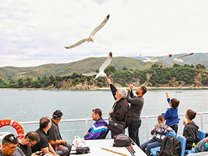 Men feeding seagulls on the ferry to Mount Athos, the Holy Mountain in Greece, photo by Ivan Kralj