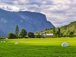 A green meadow with hay bales in Aurland, Norway, photo by Ivan Kralj