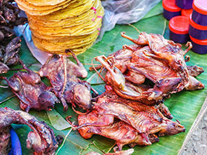 Rats and other rodents displayed on the Morning market in Luang Prabang, Laos, photo by Ivan Kralj