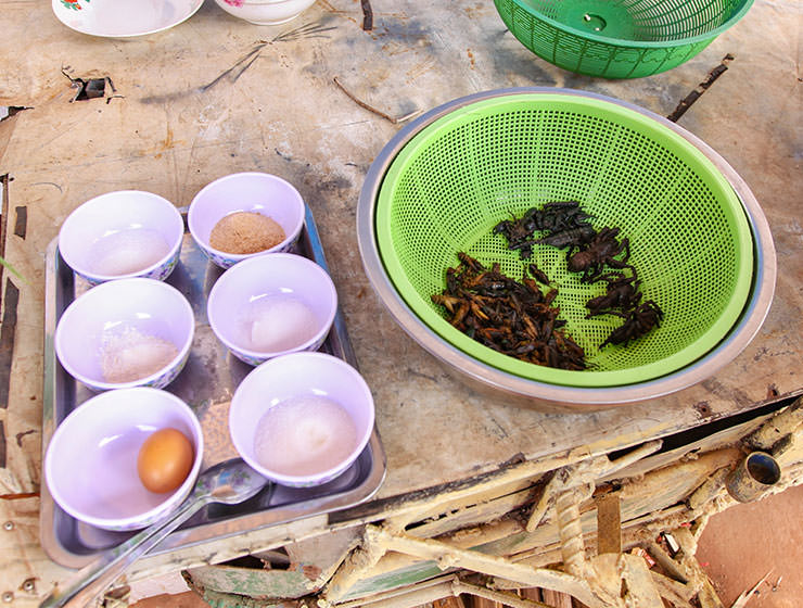 Ingredients needed for today's meal at Backstreet Academy's Fear Factor Challenge cooking class in Siem Reap, Cambodia, a country where they love eating insects, photo by Ivan Kralj
