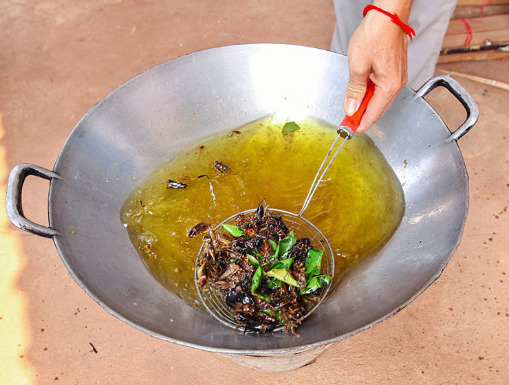 Crickets deep-frying in a wok at Backstreet Academy's Fear Factor Challenge, in Siem Reap, Cambodia, a country where they love eating insects, photo by Ivan Kralj