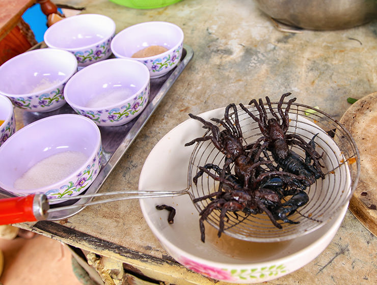 Tarantula spiders being strained before frying at Backstreet Academy's Fear Factor Challenge, in Siem Reap, Cambodia, a country where they love eating insects