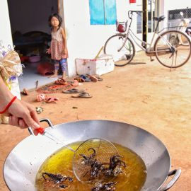 Tarantulas and scorpions deep-frying in a wok at Backstreet Academy's Fear Factor Challenge, in Siem Reap, Cambodia, a country where they love eating insects, photo by Ivan Kralj