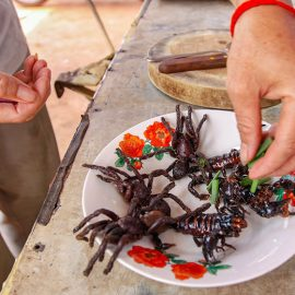 Tarantulas and scorpions on a plate being sprinkled with scallion, at Backstreet Academy's Fear Factor Challenge, in Siem Reap, Cambodia, a country where they love eating insects, photo by Ivan Kralj