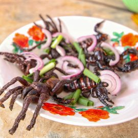 Tarantulas and scorpions served on a plate together with red onion and scallion, at Backstreet Academy's Fear Factor Challenge, in Siem Reap, Cambodia, a country where they love eating insects, photo by Ivan Kralj
