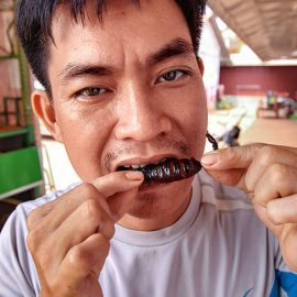 The host Ratana Ouch biting on a fried scorpion at Backstreet Academy's Fear Factor Challenge, in Siem Reap, Cambodia, photo by Ivan Kralj