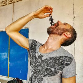 Pipeaway blogger Ivan Kralj holding a scorpion above his mouth at Backstreet Academy's Fear Factor Challenge in Siem Reap, Cambodia, the country where they love eating insects, photo by Kim Peou
