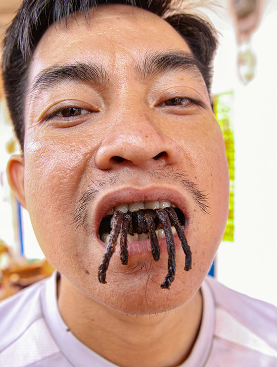 Tarantula's legs sticking out of the mouth of Ratana Ouch, the host of the Backstreet Academy's Fear Factor Challenge in Siem Reap, Cambodia, the country where they love eating insects, photo by Ivan Kralj