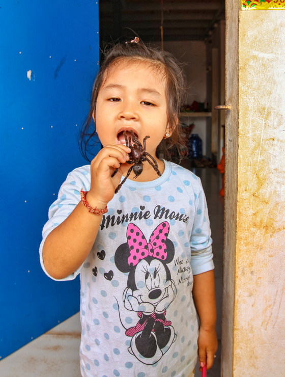 A three-year-old Sing eating a tarantula at Backstreet Academy's Fear Factor Challenge, in Siem Reap, Cambodia, photo by Ivan Kralj