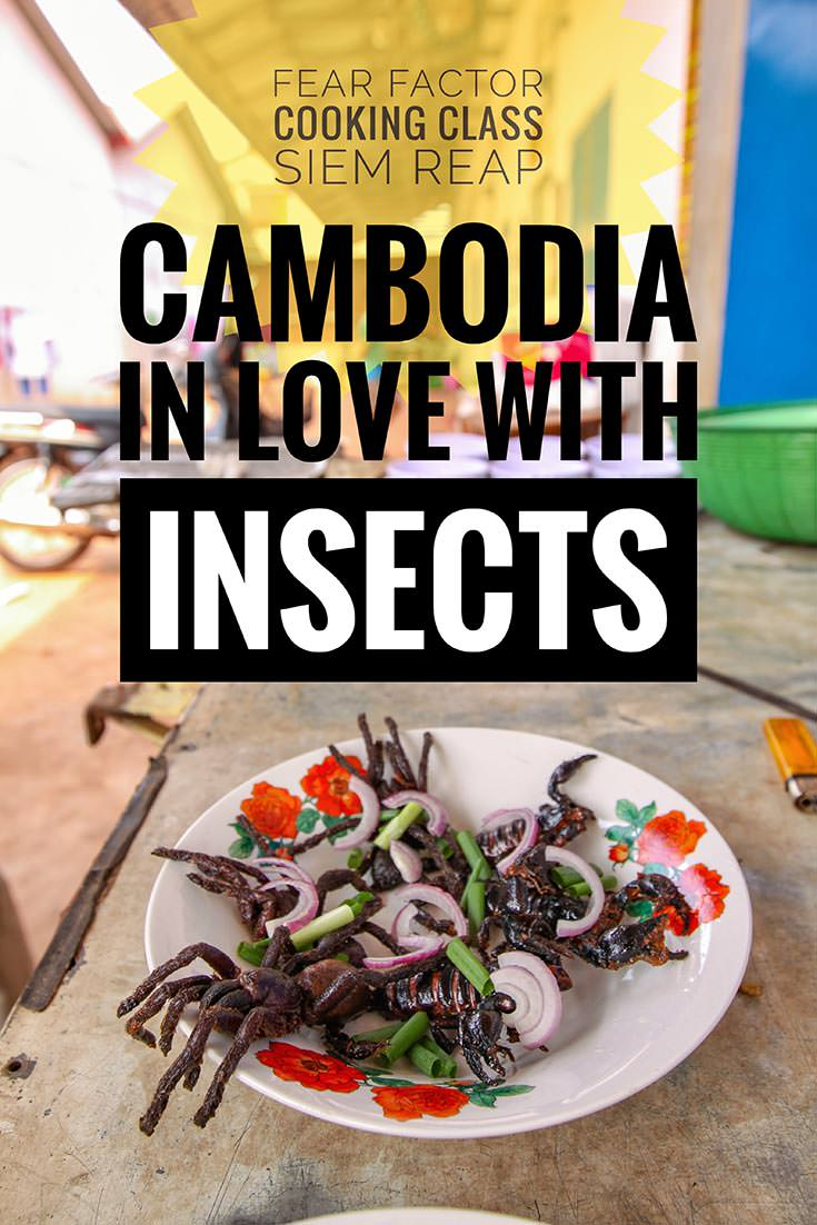 After the dark period of Khmer Rouge regime, Cambodians developed an unusual taste for insect cuisine. Fear Factor Challenge in Siem Reap enables you to learn how to prepare and then also eat crickets, tarantulas, scorpions and other crawling food. Do you have what it takes to develop the love for eating bugs?