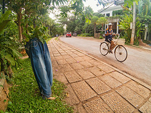 A local many riding a bicycle next to the trees growing in the jeans across the road of Jaya House RiverPark, a plastic-free hotel in Siem Reap, Cambodia, photo by Ivan Kralj
