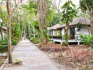 Bungalows at Mooban Talay Resort on Koh Samet island, Thailand, are surrounded by lush tropical vegetation, and trees grow on pathways or on the terraces, photo by Ivan Kralj