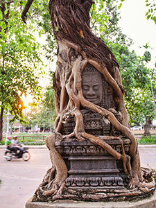 Tree roots wrapping the Khmer sculpture in front of the Treeline Urban Resort, an eco-friendly luxury hotel in Siem Reap, Cambodia, photo by Ivan Kralj