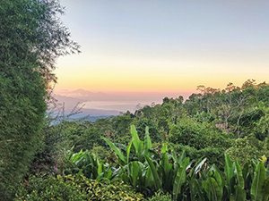 Views of the Northern Bali over the jungle landscape at Munduk Moding Plantation, and to Javan Sea and Javan volcanoes, Indonesia, photo by Ivan Kralj