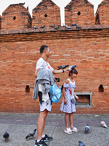 Pigeons standing on girl's head, while her father feeds them, in front of the red-brick wall of Tha Phae Gate in Chiang Mai, Thailand, photo by Ivan Kralj
